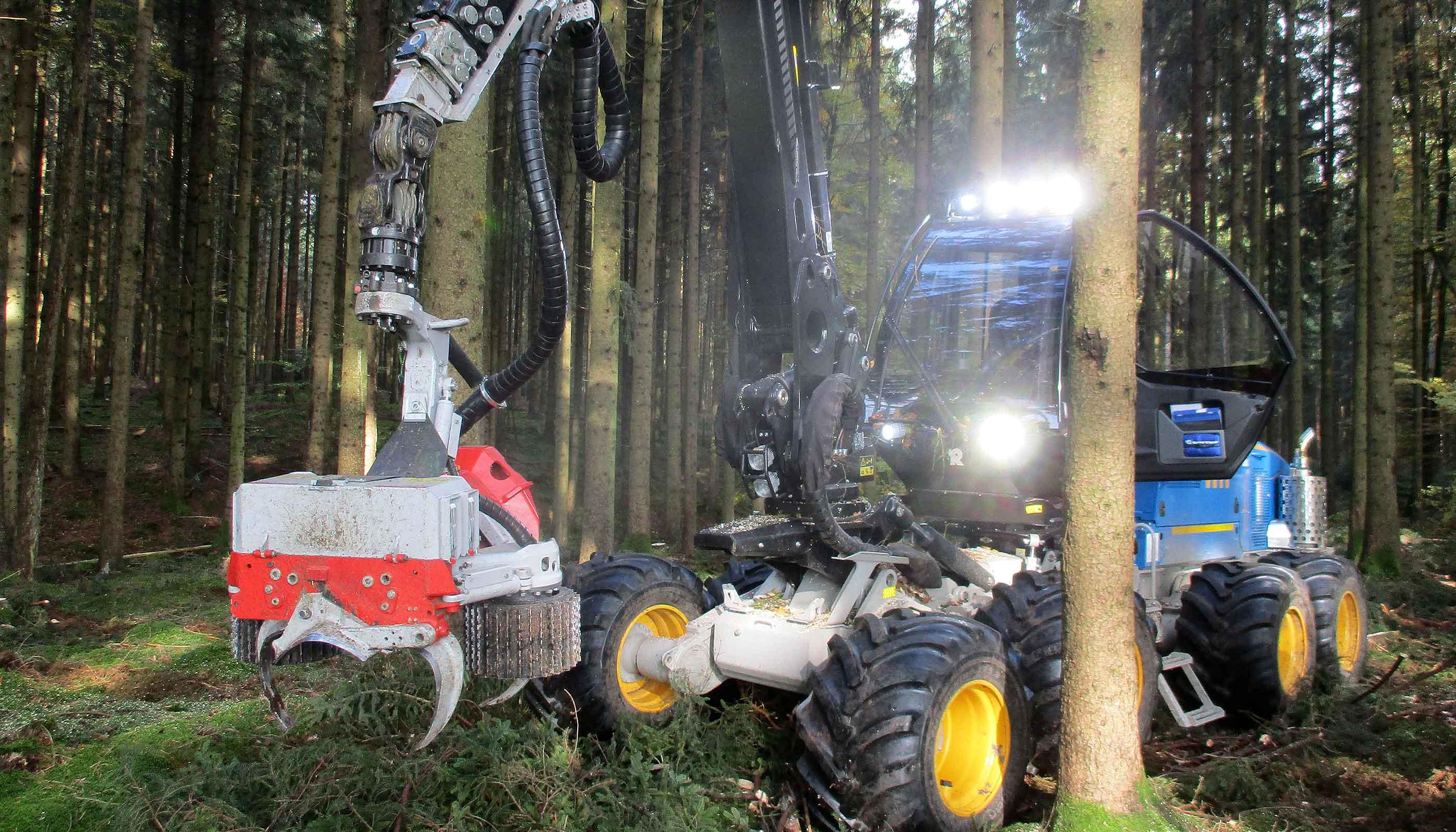 FBG Memmingen Holzeinschlag