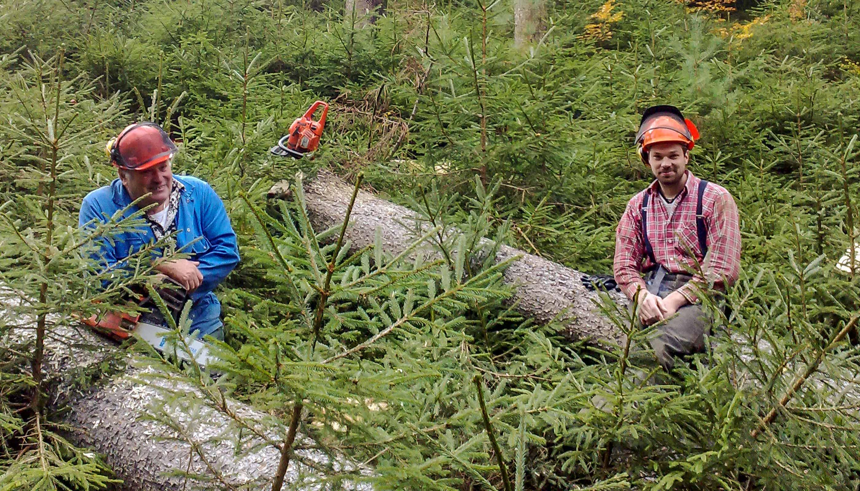 FBG Memmingen Waldpflegeverträge